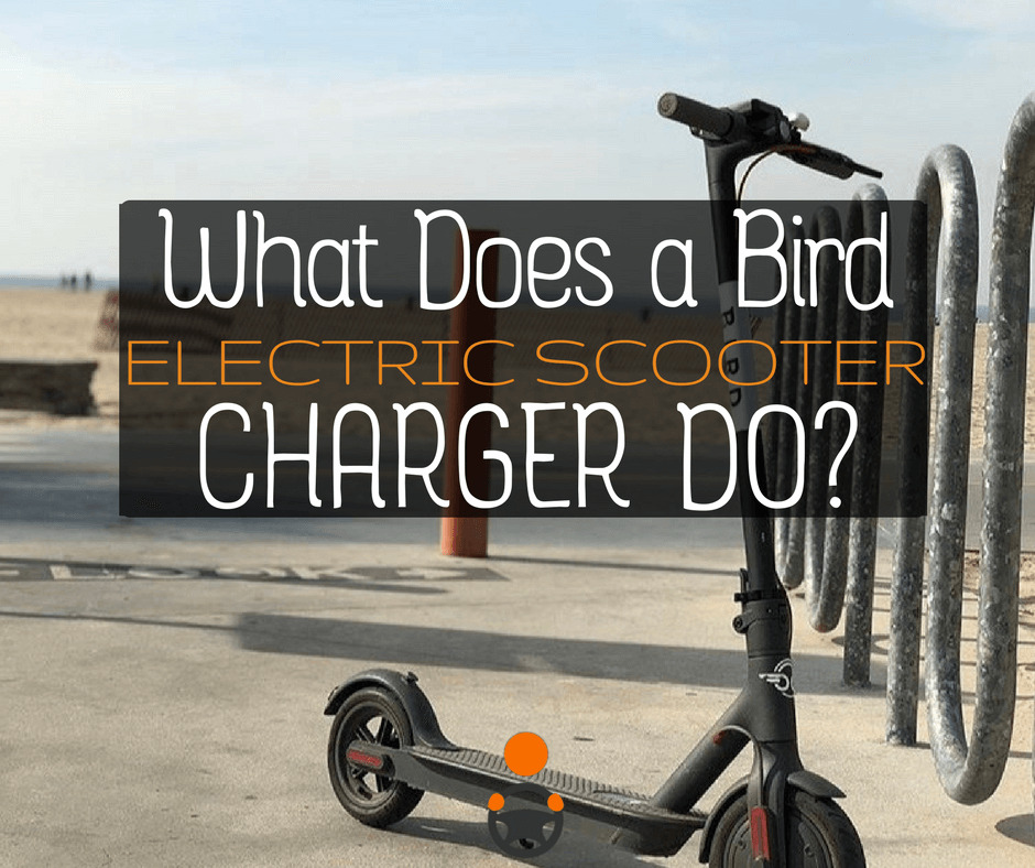 Bird Charger - Ultimate Guide For Charging Electric Scooters